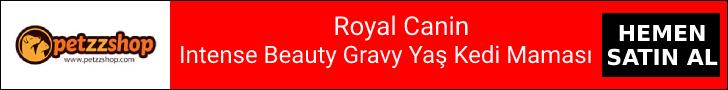 Intense Beauty Gravy Yaş Kedi Maması