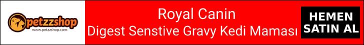 Digest Senstive Gravy Yaş Kedi Maması