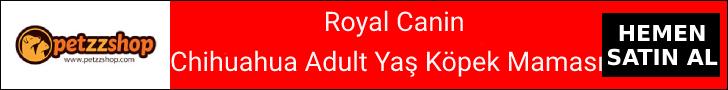 Royal Canin Chihuahua Adult Yaş Köpek Maması