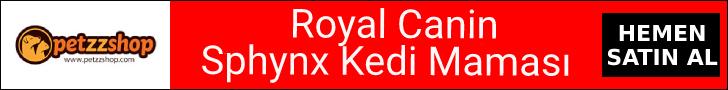 Royal Canin Sphynx Kedi Maması