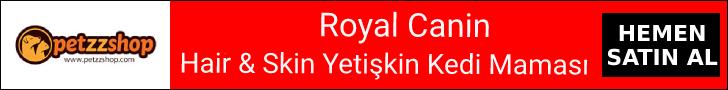 Royal Canin Hair & Skin Yetişkin Kedi Maması