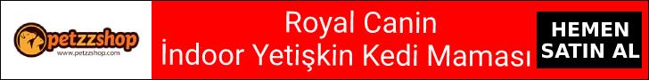 Royal Canin İndoor Yetişkin Kedi Maması Satın Al