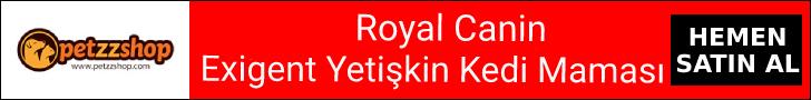 Royal Canin Exigent Savour Sensation Yetişkin Kedi Maması
