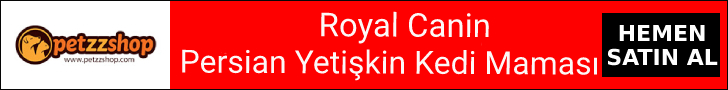 Royal Canin Persian Yetişkin Kedi Maması