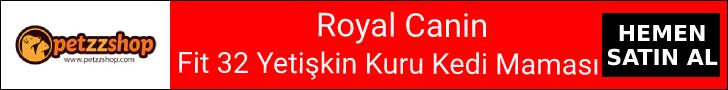 Royal Canin Fit 32 Yetişkin Kuru Kedi Maması