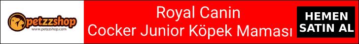 Royal Canin Cocker Junior Köpek Maması