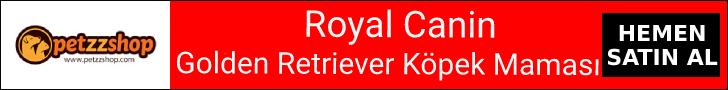 Royal Canin Golden Retriever Köpek Maması