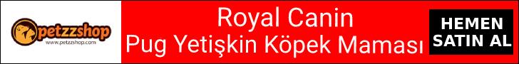 Royal Canin Pug Adult Köpek Maması