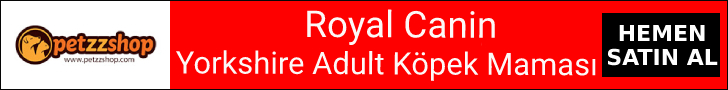 Royal Canin Yorkshire Terrier Adult Köpek Maması
