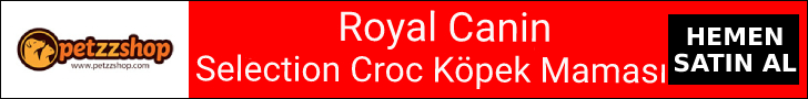 Royal Canin Selection Premium Croc Adult Köpek Maması