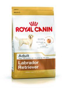 Royal Canin Adult Labrador Retriever Köpek Maması