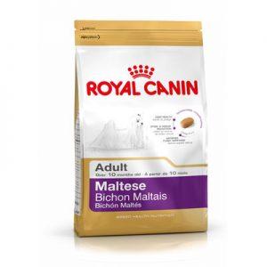 Royal Canin Adult Maltese Köpek Maması