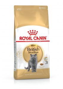 Royal Canin British Shorthair Kedi Maması