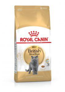 Royal Canin British Shorthair Kedi Maması