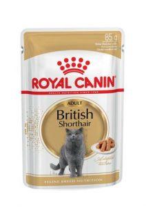 Royal Canin British Shorthair Yetişkin Yaş Kedi Maması