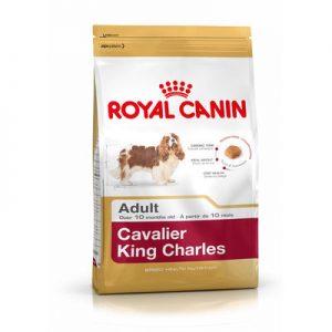Royal Canin Cavalier King Charles Adult Köpek Maması