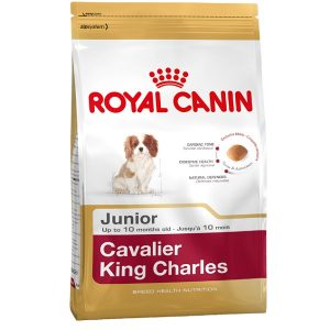 Royal Canin Cavalier King Charles Junior Köpek Maması