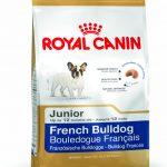 Royal Canin French Bulldog Junior Köpek Maması