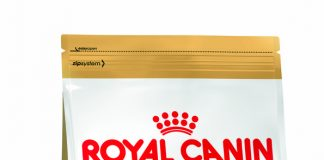Royal Canin French Bulldog Köpek Maması