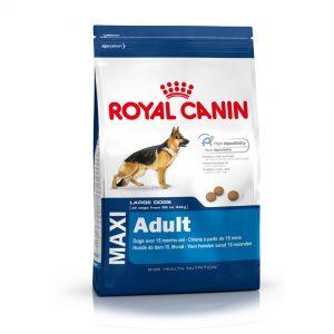 Royal Canin Maxi Adult Yetişkin Köpek Maması
