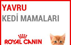Royal Canin Yavru Kedi Mamaları