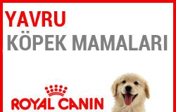 Royal Canin Yavru Köpek Mamaları