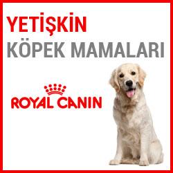 Royal Canin Yetişkin Köpek Mamaları